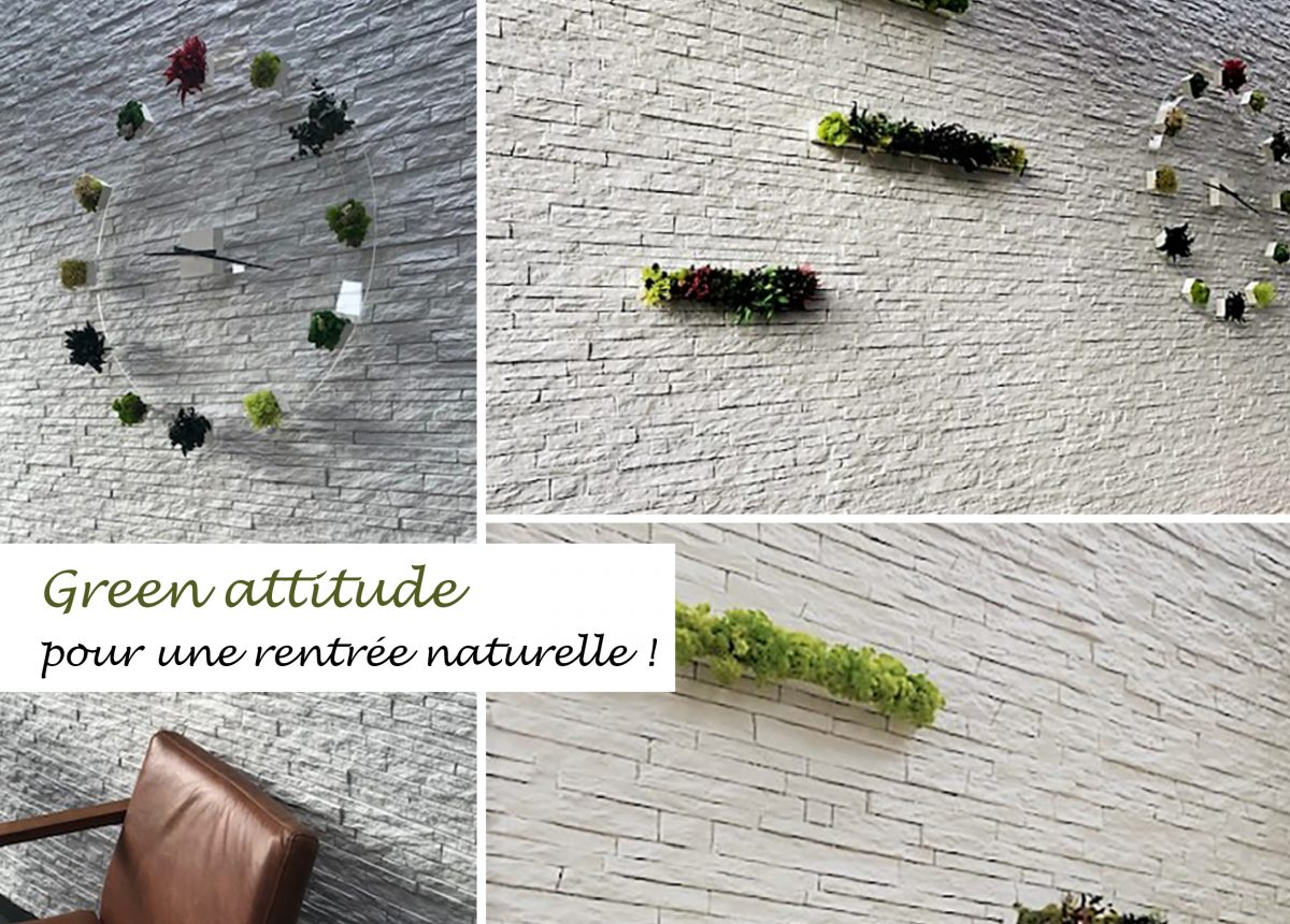green-attitude-rentree-2020-staffdecor